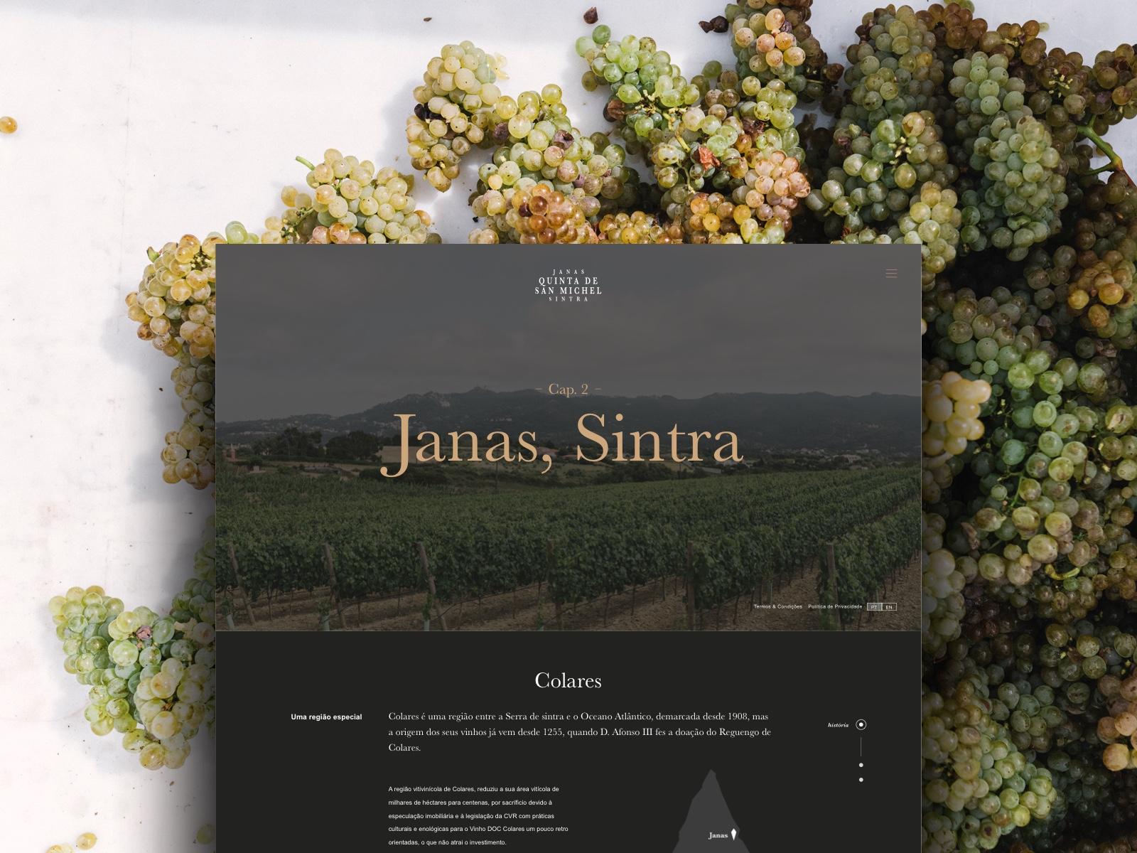 Quinta de San Michel, a nova marca dos vinhos de Janas