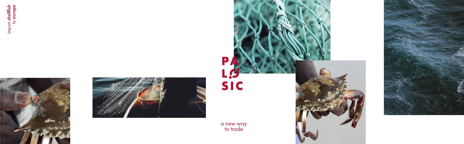 comunicacao-palosic-activemedia