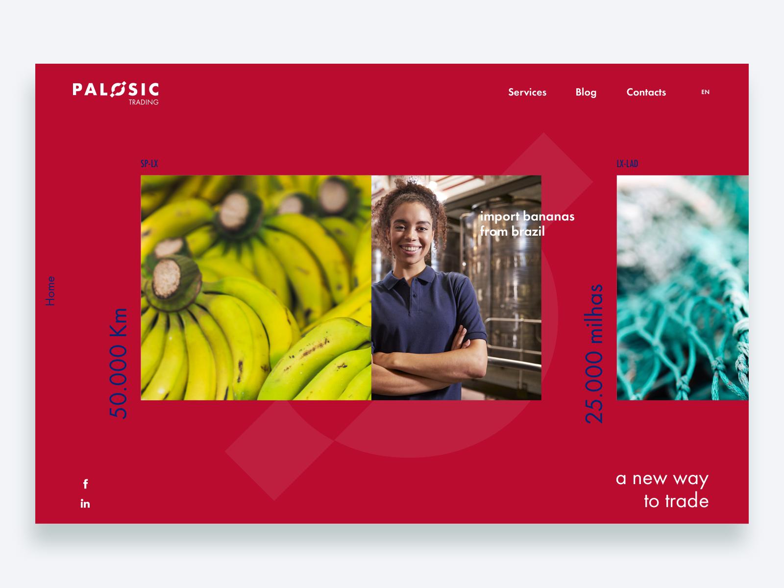 webcases-palosic-activemedia
